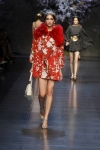 dolce-and-gabbana-spring-2014-collection-12-333x500_0