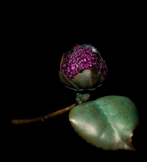 10. Camellia Brooch 2010_JAR