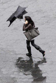 We've all been there- the cheapie street umbrella that caves in with every gust of wind.